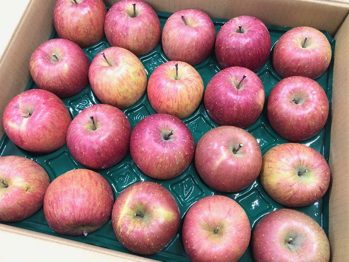 「青森りんご」寄贈式